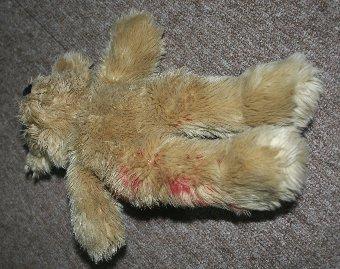 子犬の血がついたぬいぐるみ