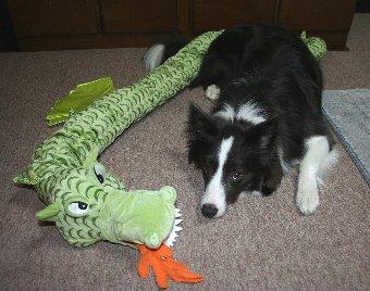 大きなドラゴンのぬいぐるみをもらった犬