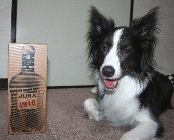 同じ名前のウィスキーボトルと記念撮影する犬